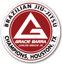 Brazilian Jiu-Jitsu for Everyone